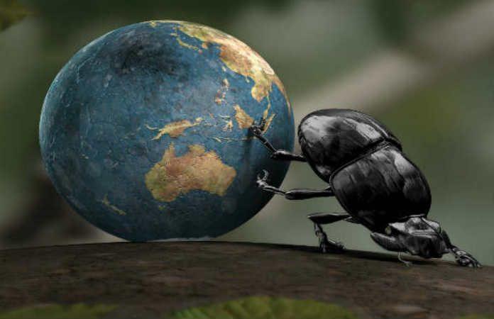 entrepreneurship bug_main