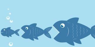 big-fish-eat-little-fish-food