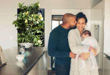 OxyGarden purify indoor air