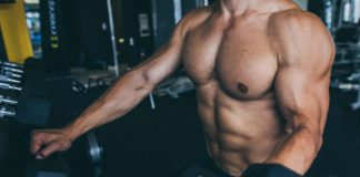 exercises for whole body muscles