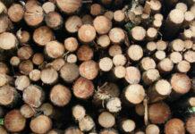 purchasing a sawmill